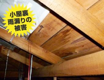 雨漏り被害を受けた小屋裏