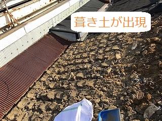 葺き土が出現