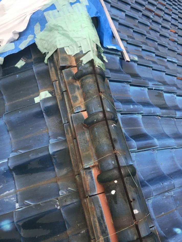 屋根養生箇所