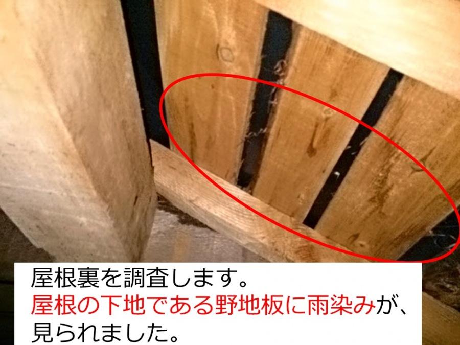 屋根裏の雨漏り調査
