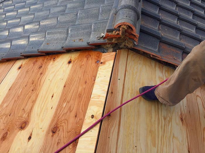構造用合板貼り棟部