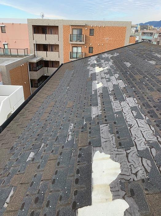 マンションの屋根現地調査
