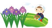 菖蒲園、宇治茶