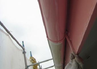 外壁の色と合わせて雨樋の全体を塗装している写真